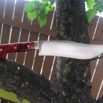 Buffalo Knife
